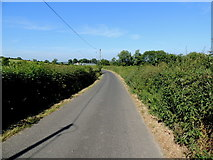 H3990 : Camus Road, Drumnahoe by Kenneth  Allen