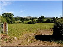 H3990 : An open field, Drumnahoe by Kenneth  Allen