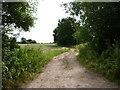 SO8564 : Track near Deans Wood, Haye Lane, Ombersley by Jeff Gogarty