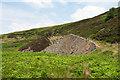 NY9630 : Eroding mine spoil in Great Eggleshope by Trevor Littlewood