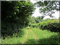 SO8535 : Bridleway to Bushley Green by Jonathan Thacker