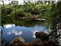 H4167 : Owenreagh River,  Drudgeon / Blacksessagh by Kenneth  Allen