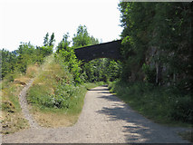 SK1771 : Monsal Trail: overbridge near Monsaldale Station by Gareth James