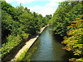 TQ2783 : Regent's Canal, Regent's Park by Malc McDonald