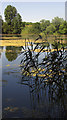 SU0436 : Brockbank Lake, Langford Lakes nature reserve : Week 27