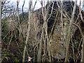 NZ3434 : Old Lime Kilns by David Robinson