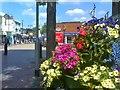 SO9496 : Bilston Blooms View by Gordon Griffiths