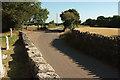 ST4849 : Honeyhurst lane, Rodney Stoke by Derek Harper