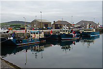 HY4411 : Kirkwall Harbour by Anne Burgess