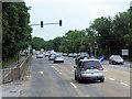 W6668 : Traffic Lights on Kinsale Road by David Dixon