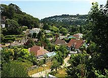 SX9364 : Houses, Ilsham valley by Derek Harper