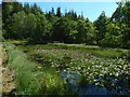 NS3985 : Former curling pond by Lairich Rig