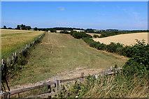 SE4738 : Towton Dale by Chris Heaton