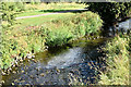 J2890 : The Sixmilewater, Ballyclare (July 2018) by Albert Bridge