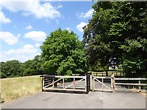 ST5707 : Northern gate at Melbury Park by Oliver Dixon