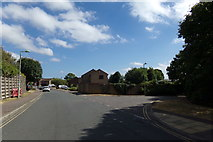 TM3877 : Bramblewood Way, Halesworth by Adrian Cable