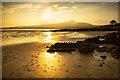 NX5652 : Fleet Bay : Week 29