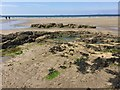 SM8513 : Low tide at Little Haven by Alan Hughes