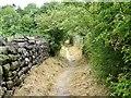 SK3742 : Toad Lane by Ian Calderwood