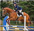 NY4657 : Cumbrian Horse Trials, Warwick Hall - 22 July 2018 (4) by The Carlisle Kid