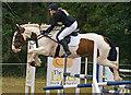 NY4657 : Cumbrian Horse Trials, Warwick Hall - 22 July 2018 (6) by The Carlisle Kid