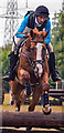 NY4657 : Cumbrian Horse Trials, Warwick Hall - 22 July 2018 (10) by The Carlisle Kid