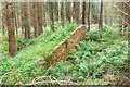 NT3338 : Brick wall in Caberston Forest by Jim Barton