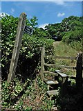 ST3000 : Stile and footpath, leading north from Watery Lane by Roger Cornfoot