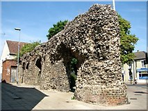 TG2309 : A section of the old city wall by Evelyn Simak