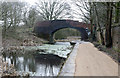 SD7706 : Manchester Bolton and Bury Canal towpath by Chris Allen