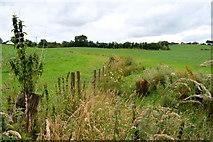 H5371 : Drain, Drumduff / Bancran by Kenneth  Allen