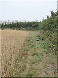 SX6645 : A well-maintained permissive path south of Bigbury by David Smith