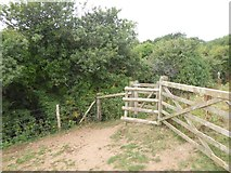 SX6746 : Kissing gate by Doctor's Wood, Bigbury by David Smith