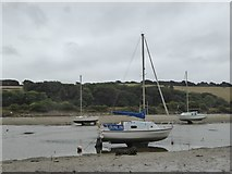 SX6846 : Yachts in the River Avon and wall of South Efford Marsh by David Smith