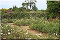 TQ1352 : Rose garden, Polesden Lacey by M J Roscoe