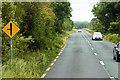 W4151 : N71 between Clonakilty and Bandon by David Dixon