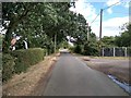 TL6506 : Rural Road at Newney Green, Writtle  by Roger Jones