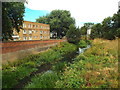 SP7460 : River Nene in Northampton by Malc McDonald