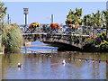 SX9676 : Dawlish Water, Jubilee Bridge by David Dixon