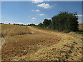 TL2480 : Start of the harvest by Hugh Venables
