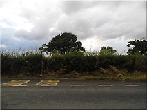 SO7606 : Bus stop on Claypits Hill by David Howard