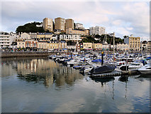 SX9163 : Torquay Old Harbour by David Dixon