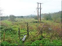 TQ7183 : Stile on footpath towards Herd Lane, Corringham by Robin Webster