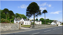 NS0866 : Woodside, Ardbeg Road by Thomas Nugent
