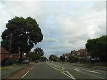 SO8315 : Finlay Road, Tuffley by David Howard