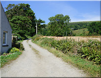 NS0667 : Road to Wester Kames Castle by Thomas Nugent