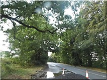 SO9818 : Layby on the A436, Pegglesworth by David Howard