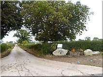 NY3840 : Driveway to Ratten Castle Farm by Oliver Dixon