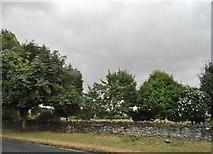 SP1414 : Woodland by the A40, Farmington by David Howard