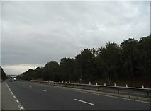 SP3308 : The A40 west of Witney by David Howard